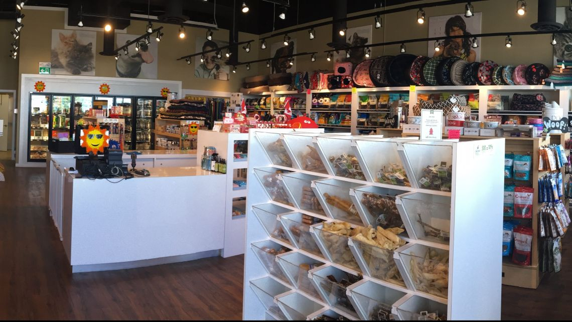 bone-and-biscuit-edmonton-meadows-store-interior