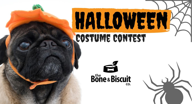 instagram halloween costume contest 2018 - bone & biscuit co.